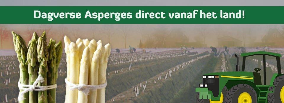Asperges-Amsterdam-dagvers-2016