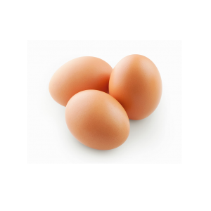 Verse biologische eieren